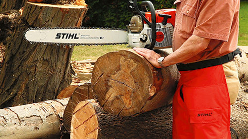 With the checks cut away from the end of the log section and your properly sized log securely raised from the ground, begin the first cut.
