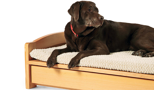 A Woodworker's Dog Bed